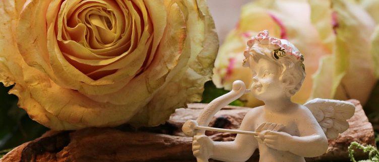 Betekenis orakel van de liefde (44 kaarten) + Liefdesorakel dagkaart trekken