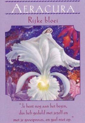 Afbeelding Aeracura – rijke bloei